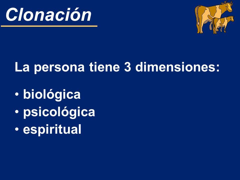 La persona tiene 3 dimensiones: biológica psicológica espiritual
