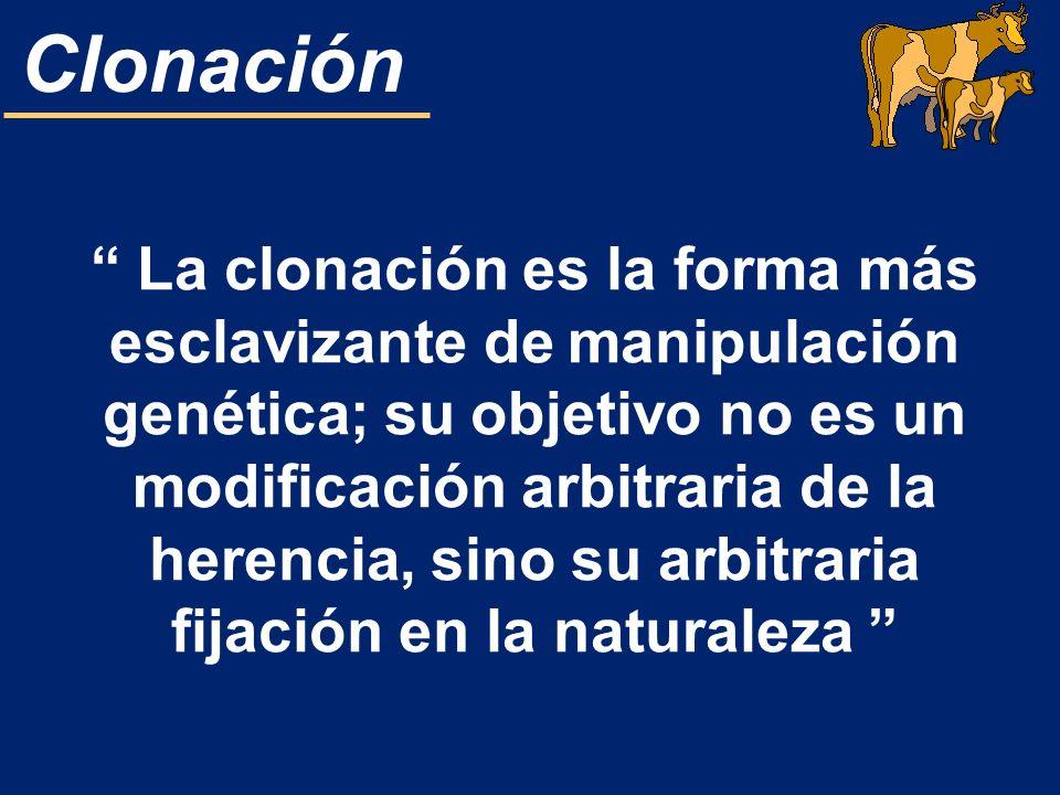 La clonación es la forma más esclavizante de manipulación genética; su objetivo no es un modificación arbitraria de la herencia, sino su arbitraria fijación en la naturaleza