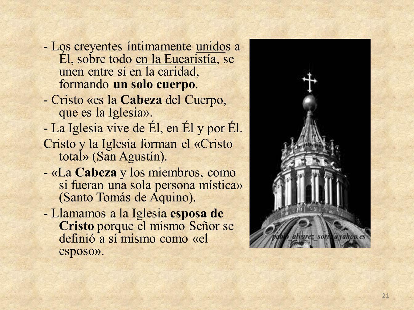 - Los creyentes íntimamente unidos a Él, sobre todo en la Eucaristía, se unen entre sí en la caridad, formando un solo cuerpo.