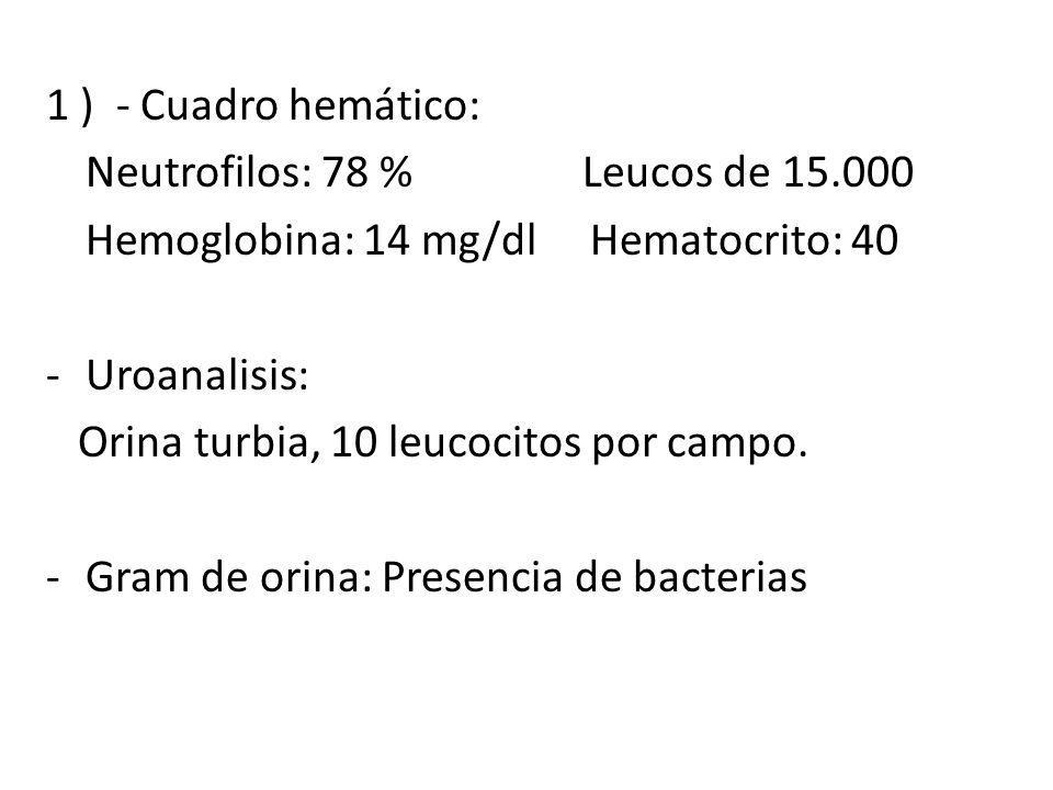 1 ) - Cuadro hemático: Neutrofilos: 78 % Leucos de 15.000. Hemoglobina: 14 mg/dl Hematocrito: 40.