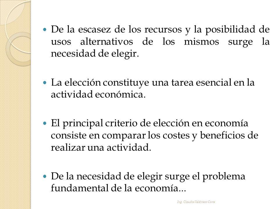 La elección constituye una tarea esencial en la actividad económica.