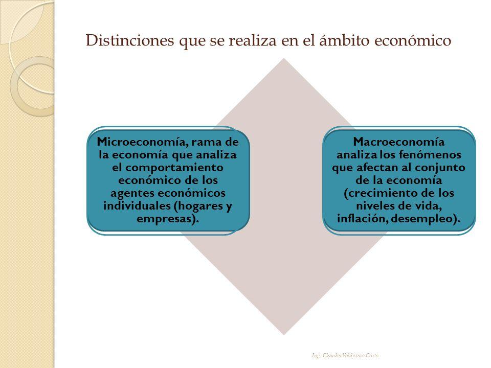 Distinciones que se realiza en el ámbito económico