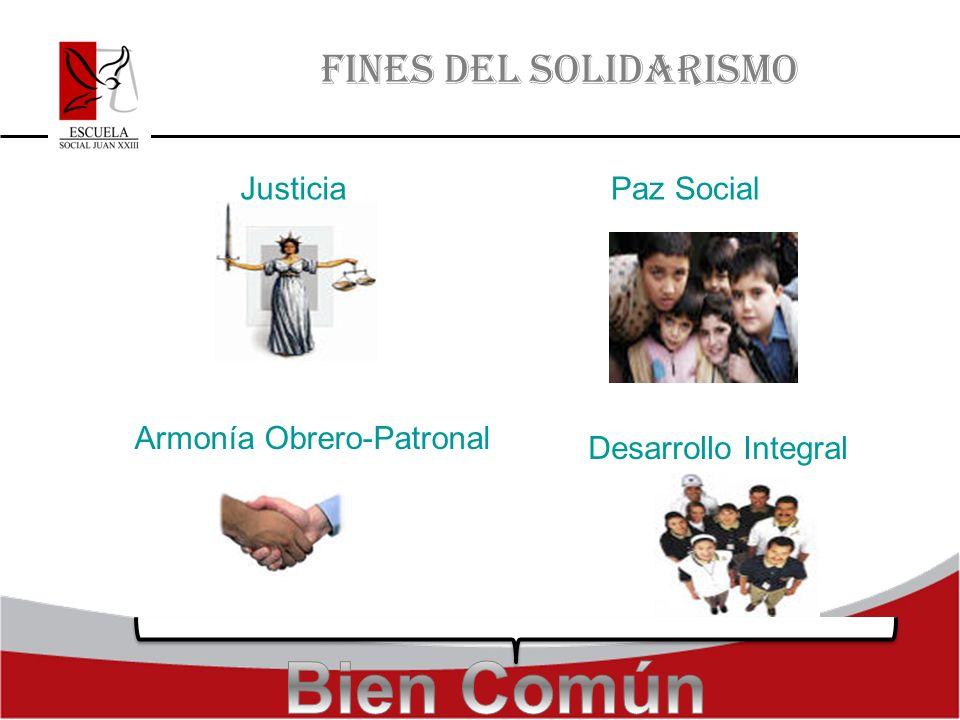 Bien Común FINES DEL SOLIDARISMO Justicia Paz Social