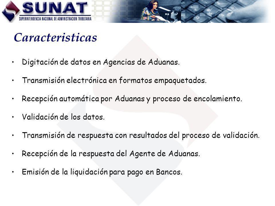Caracteristicas Digitación de datos en Agencias de Aduanas.