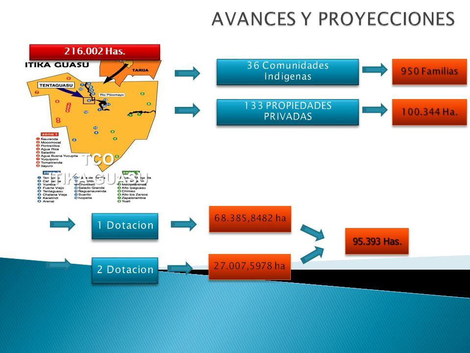 AVANCES Y PROYECCIONES