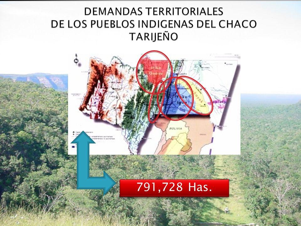 DEMANDAS TERRITORIALES DE LOS PUEBLOS INDIGENAS DEL CHACO TARIJEÑO