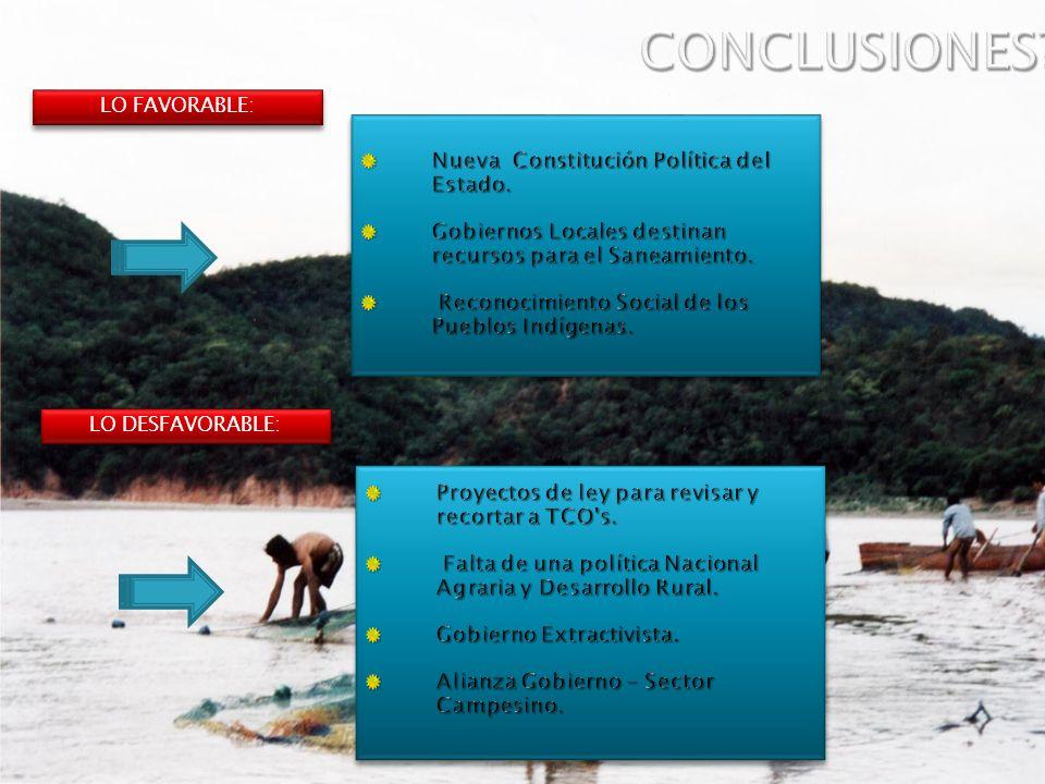 CONCLUSIONES Nueva Constitución Política del Estado.