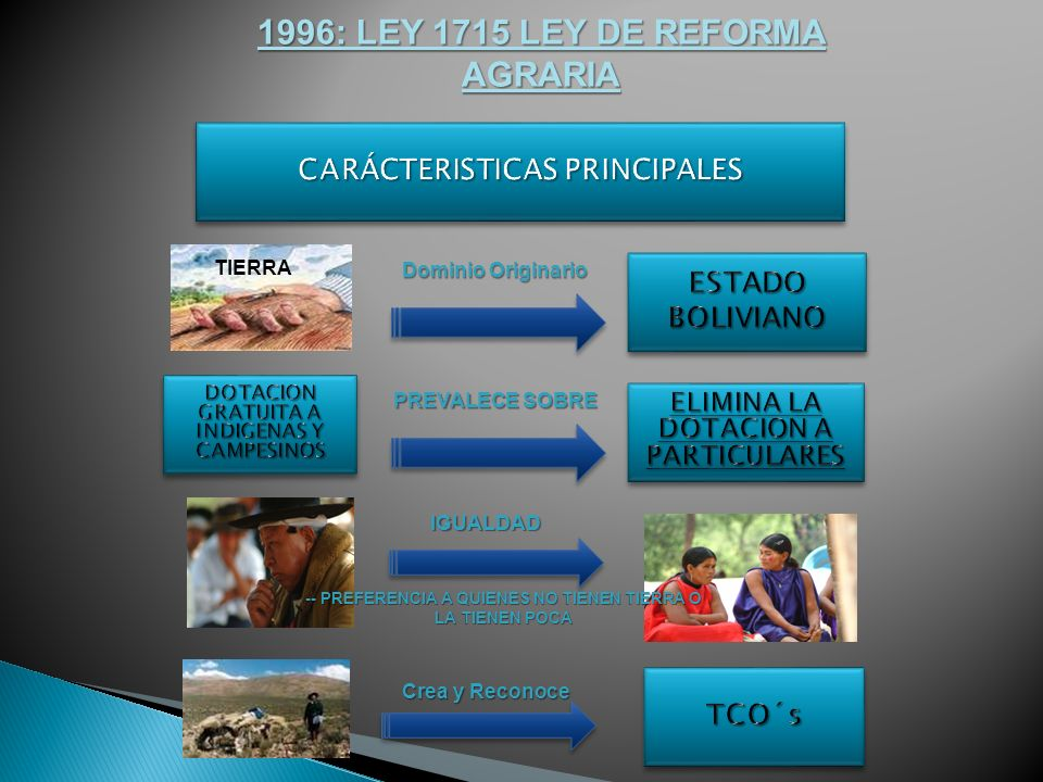 1996: LEY 1715 LEY DE REFORMA AGRARIA
