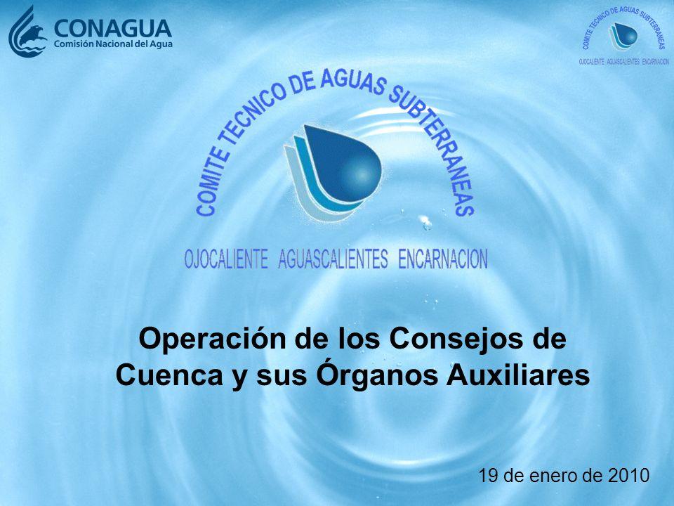 Operación de los Consejos de Cuenca y sus Órganos Auxiliares