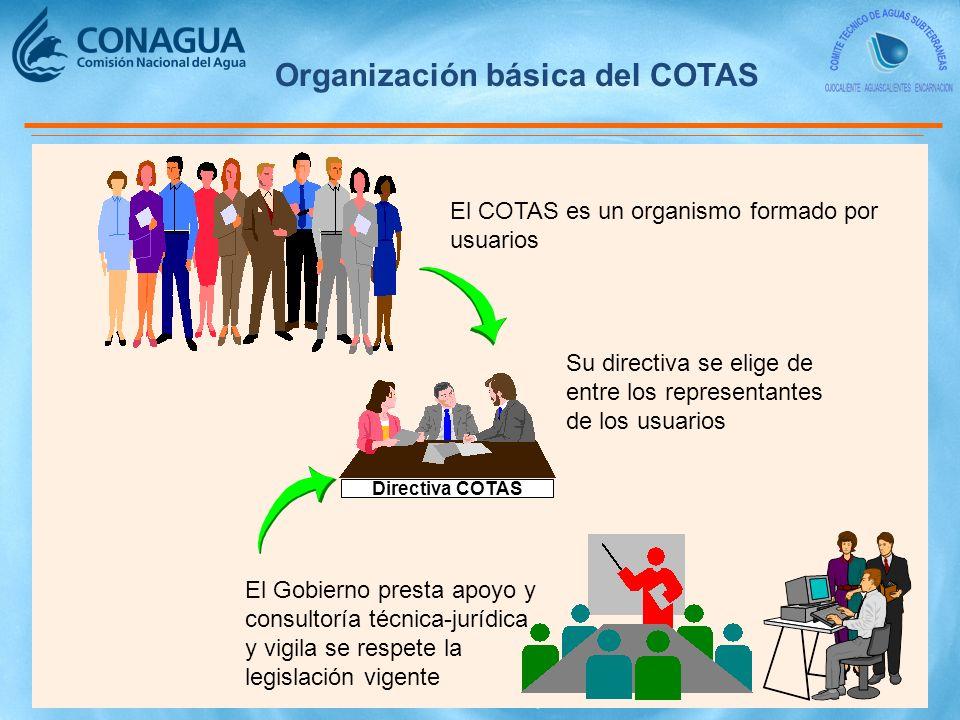 Organización básica del COTAS
