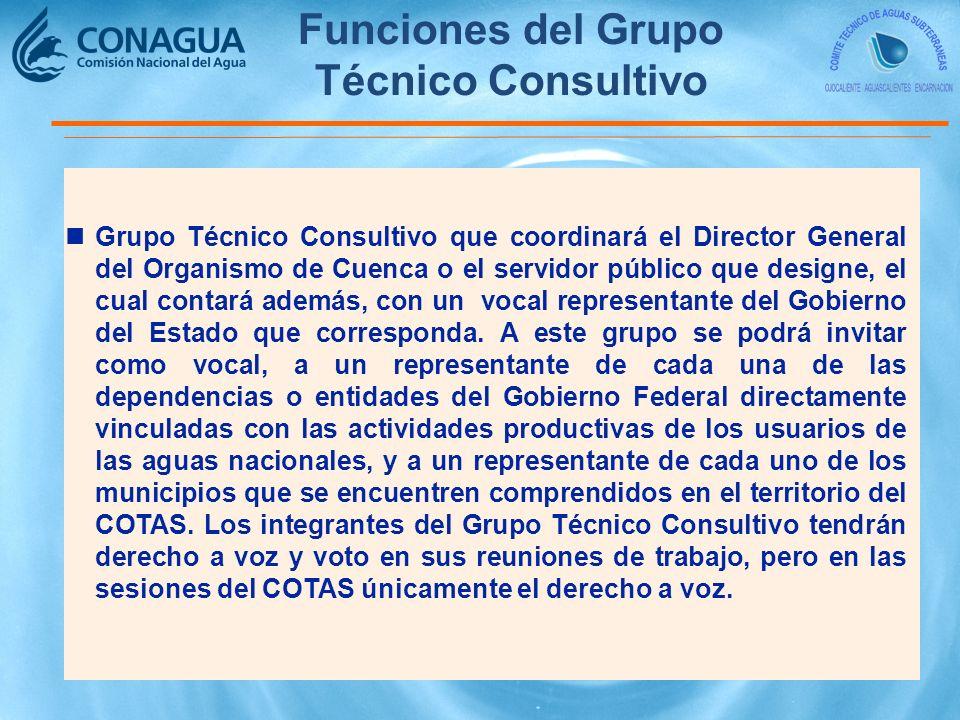 Funciones del Grupo Técnico Consultivo