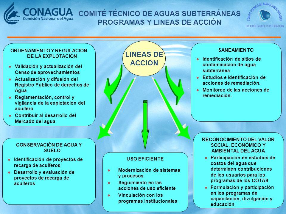 COMITÉ TÉCNICO DE AGUAS SUBTERRÁNEAS PROGRAMAS Y LINEAS DE ACCIÓN