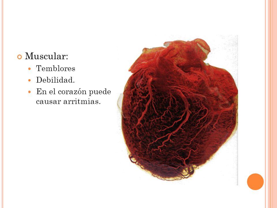 Muscular: Temblores Debilidad. En el corazón puede causar arritmias.