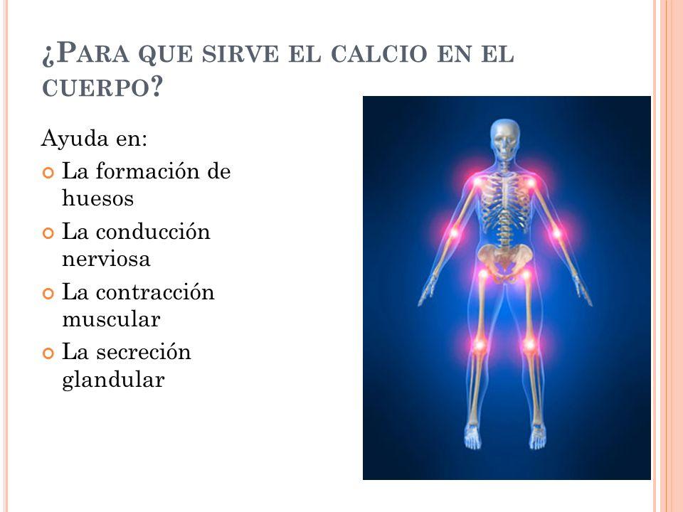 ¿Para que sirve el calcio en el cuerpo