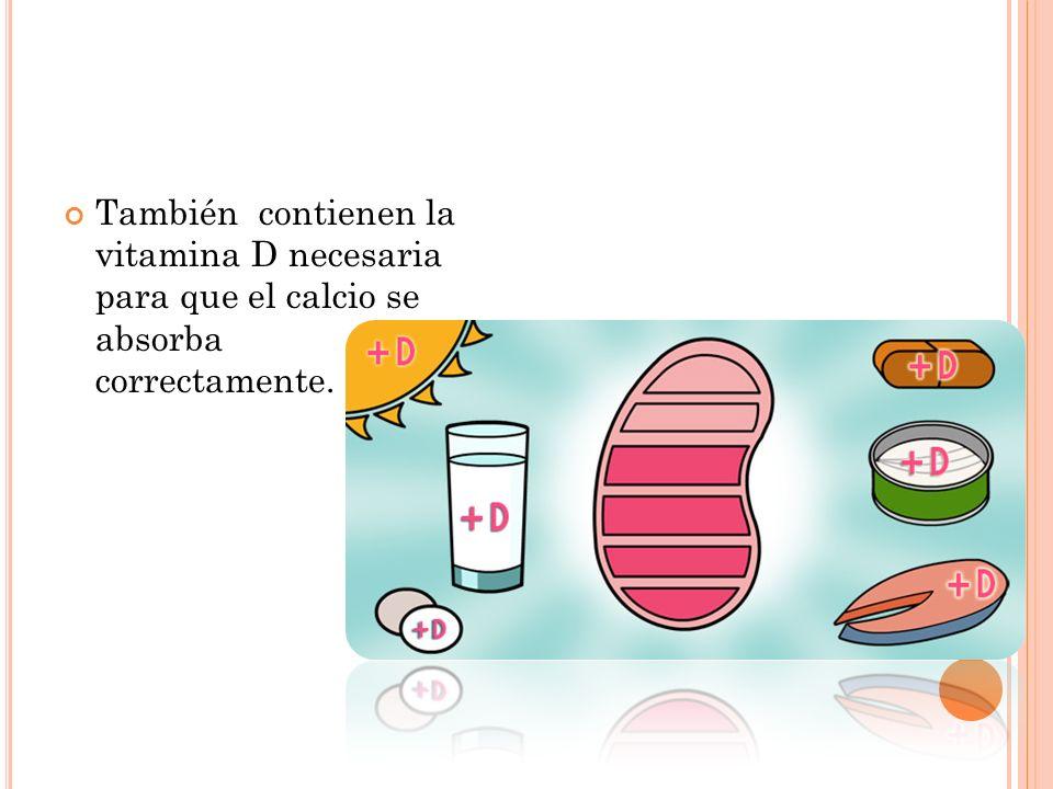 También contienen la vitamina D necesaria para que el calcio se absorba correctamente.