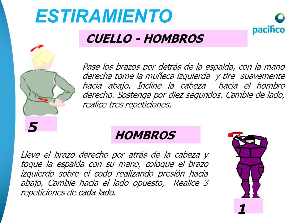 ESTIRAMIENTO 5 1 CUELLO - HOMBROS HOMBROS