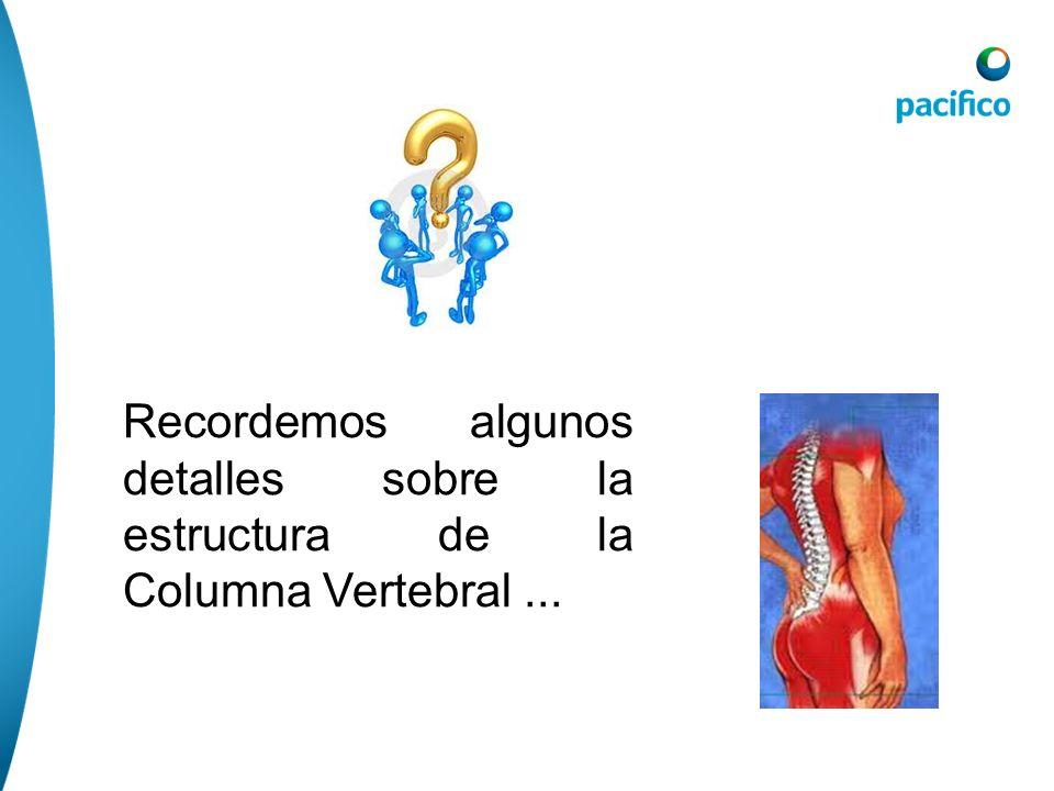 Recordemos algunos detalles sobre la estructura de la Columna Vertebral ...