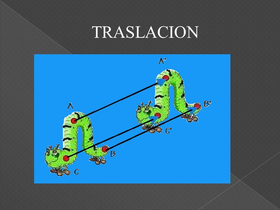 TRASLACION
