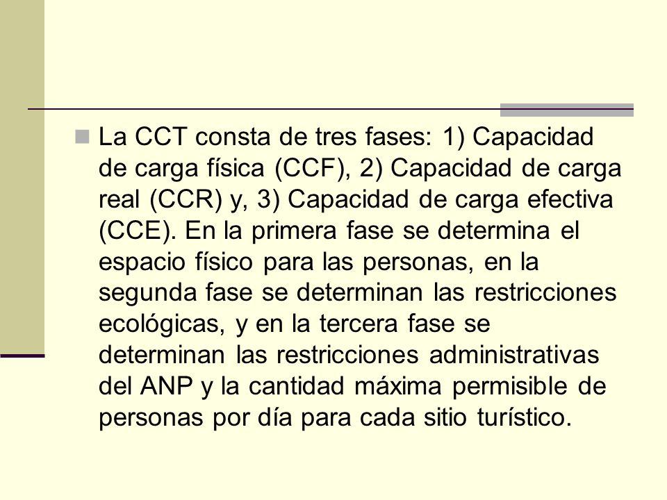 La CCT consta de tres fases: 1) Capacidad de carga física (CCF), 2) Capacidad de carga real (CCR) y, 3) Capacidad de carga efectiva (CCE).