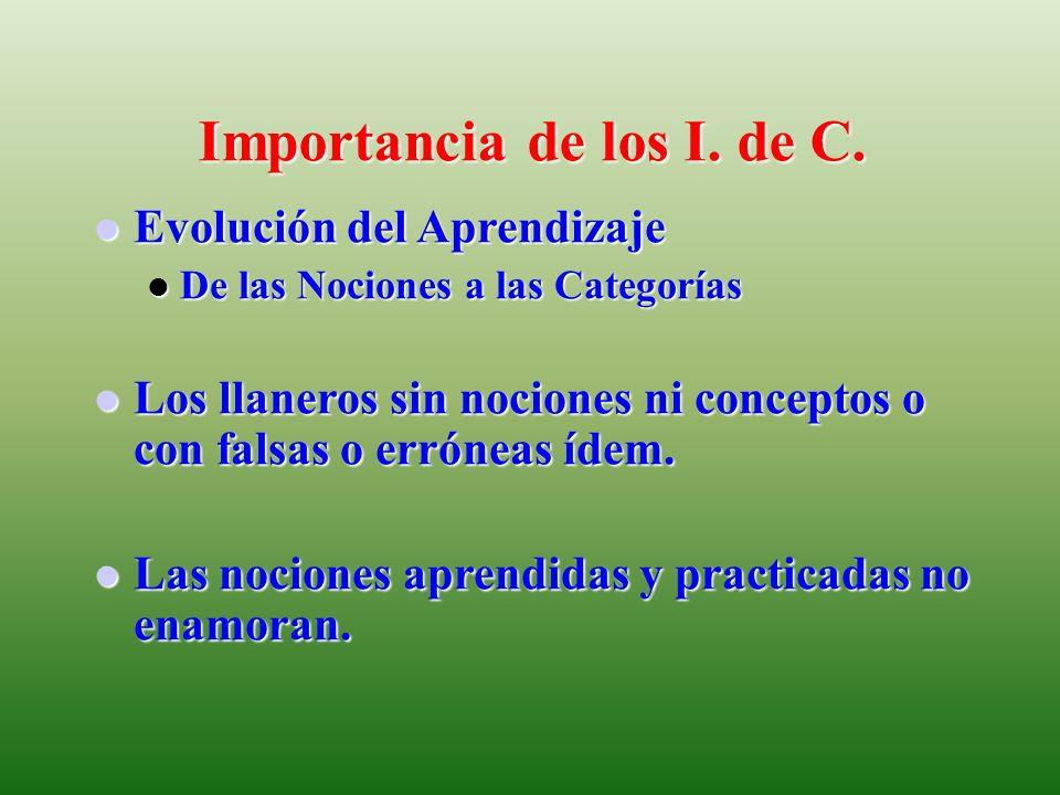Importancia de los I. de C.