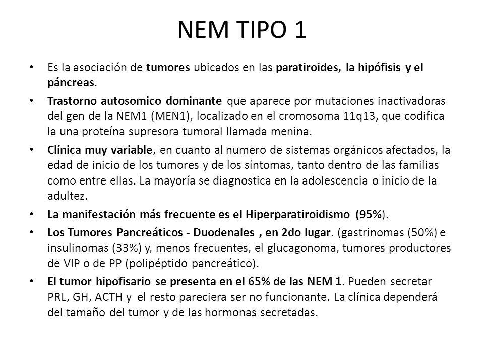 NEM TIPO 1 Es la asociación de tumores ubicados en las paratiroides, la hipófisis y el páncreas.