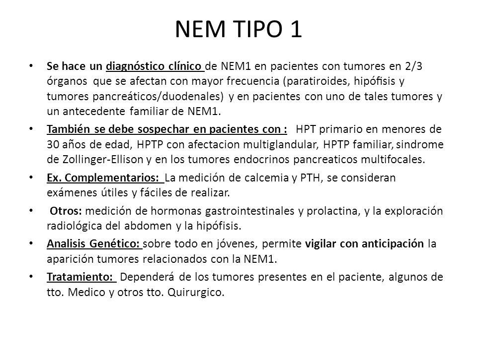 NEM TIPO 1