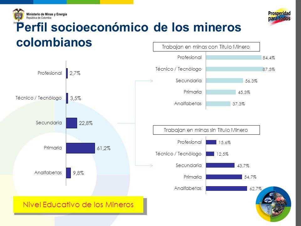 Perfil socioeconómico de los mineros colombianos