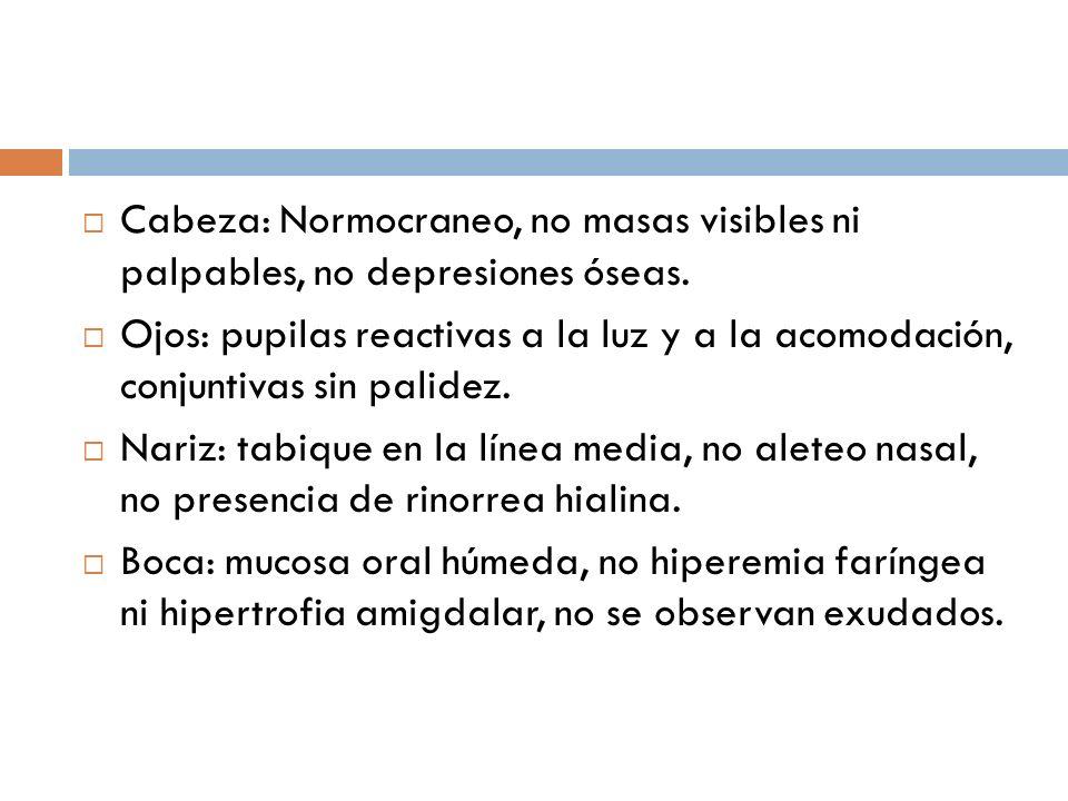 Cabeza: Normocraneo, no masas visibles ni palpables, no depresiones óseas.