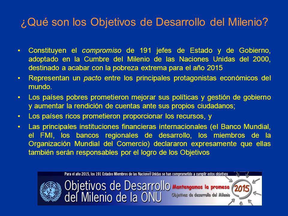 ¿Qué son los Objetivos de Desarrollo del Milenio
