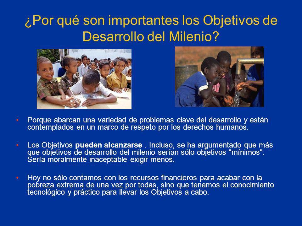 ¿Por qué son importantes los Objetivos de Desarrollo del Milenio