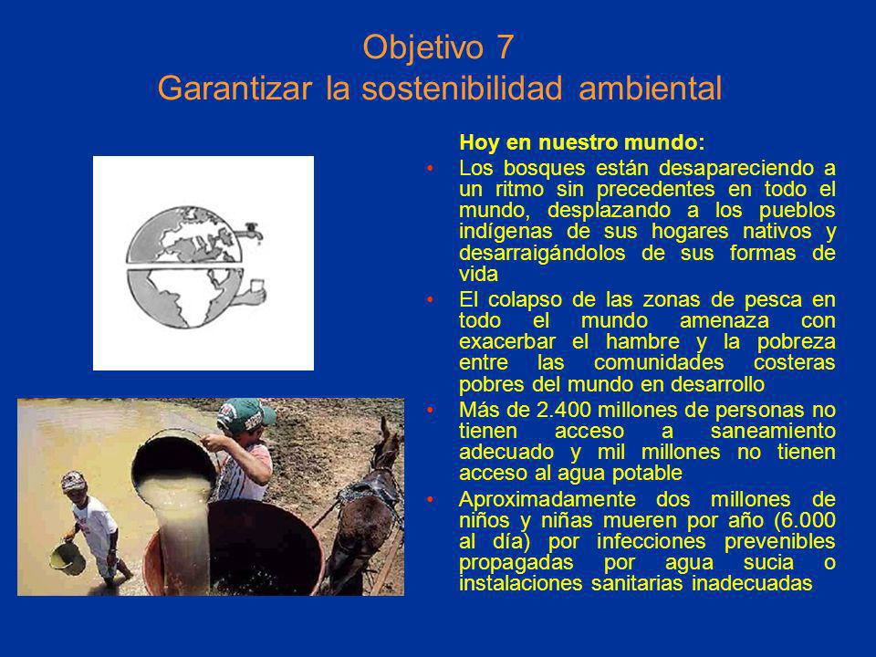 Objetivo 7 Garantizar la sostenibilidad ambiental