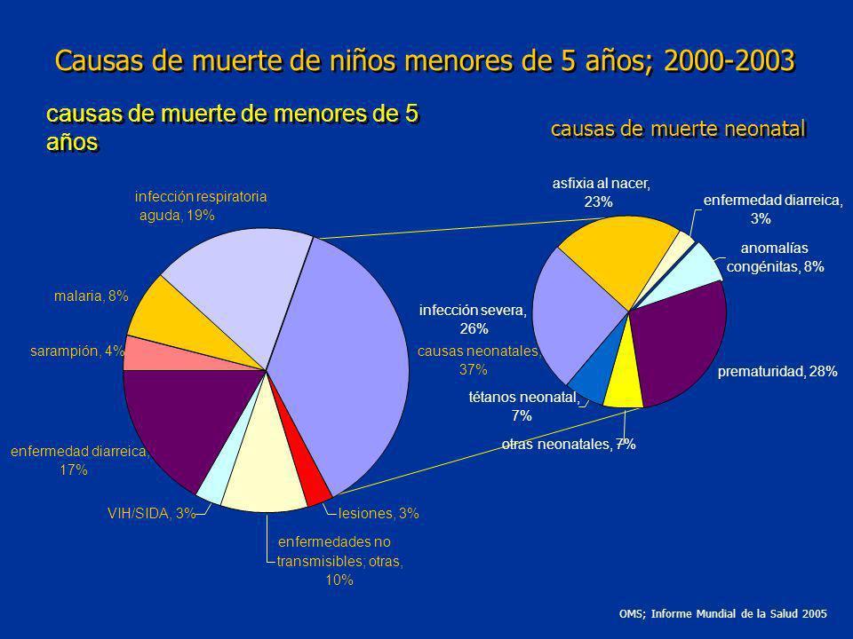 causas de muerte de menores de 5 años