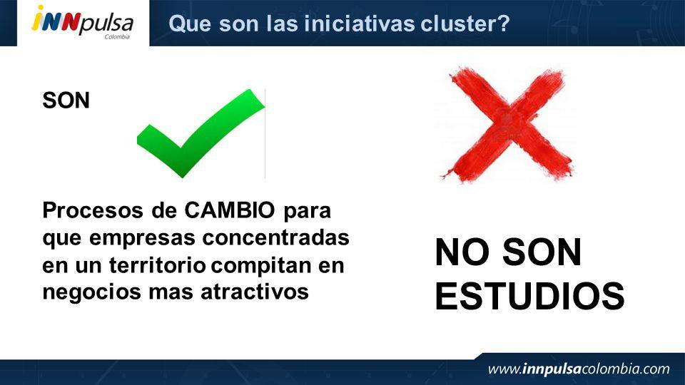 NO SON ESTUDIOS Que son las iniciativas cluster SON