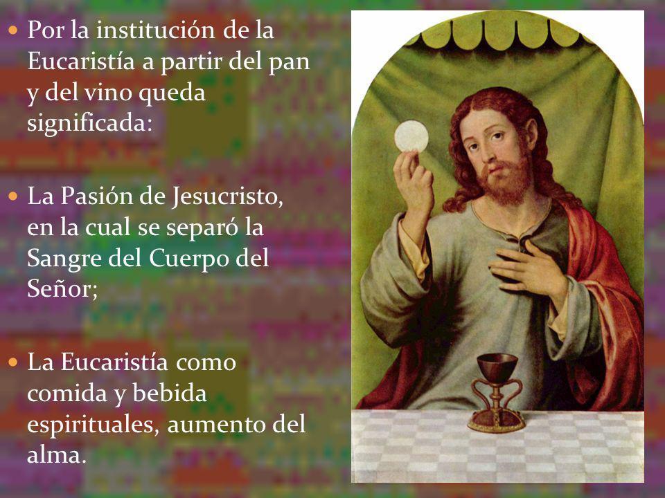 Por la institución de la Eucaristía a partir del pan y del vino queda significada: