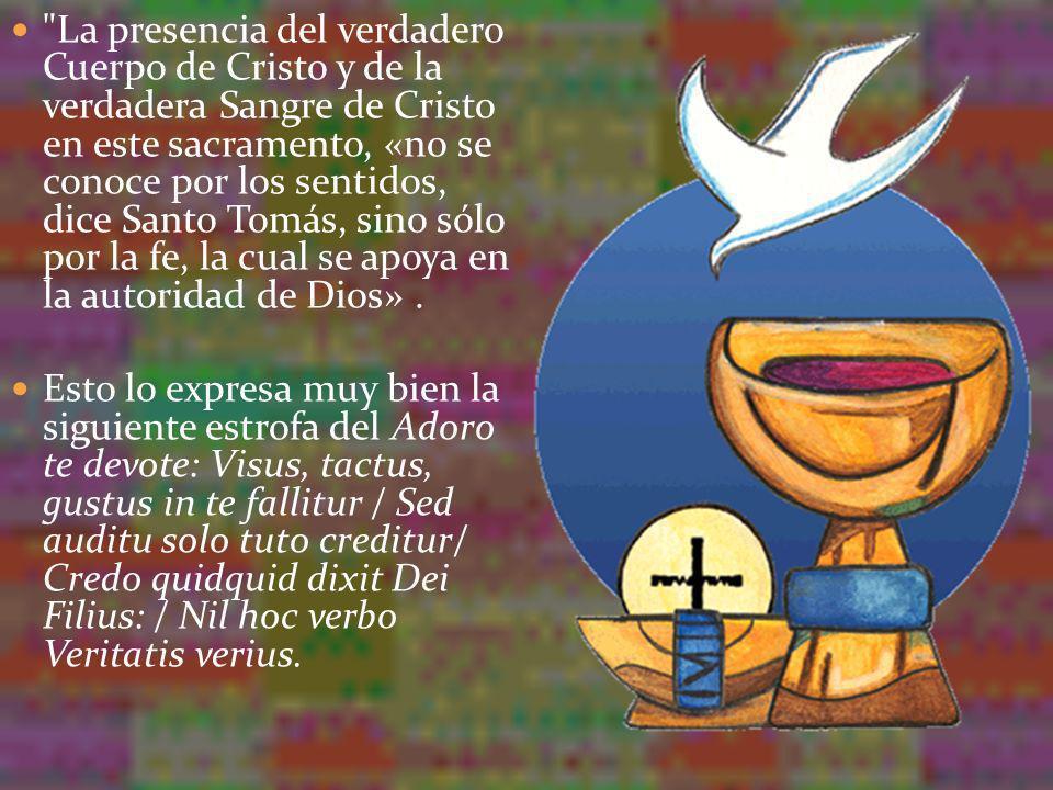 La presencia del verdadero Cuerpo de Cristo y de la verdadera Sangre de Cristo en este sacramento, «no se conoce por los sentidos, dice Santo Tomás, sino sólo por la fe, la cual se apoya en la autoridad de Dios» .