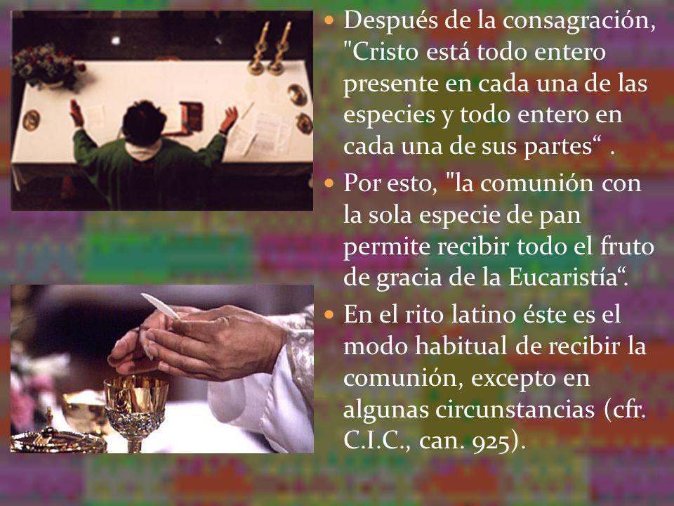 Después de la consagración, Cristo está todo entero presente en cada una de las especies y todo entero en cada una de sus partes .