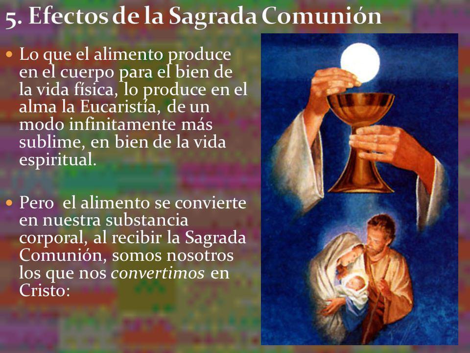 5. Efectos de la Sagrada Comunión