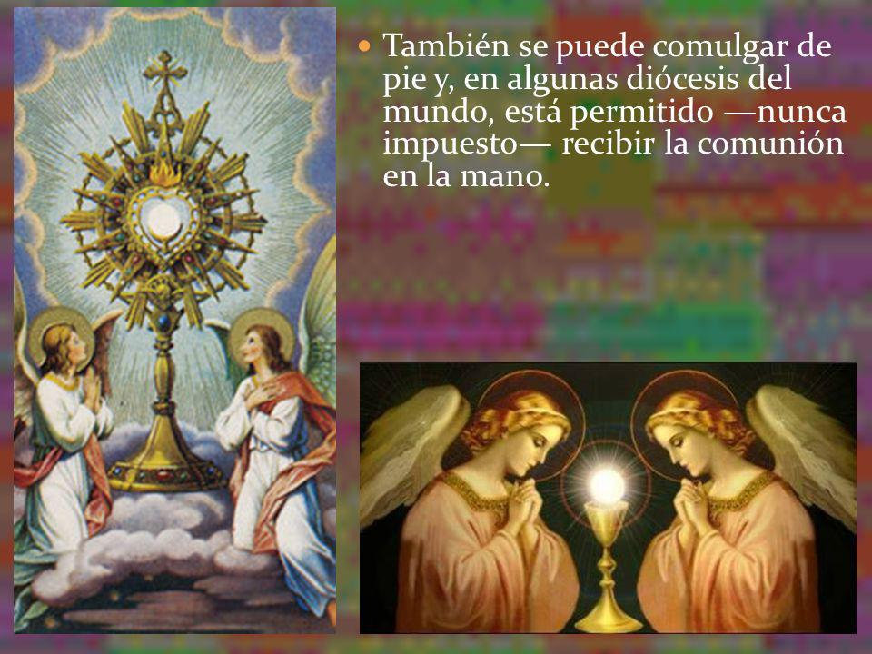 También se puede comulgar de pie y, en algunas diócesis del mundo, está permitido —nunca impuesto— recibir la comunión en la mano.