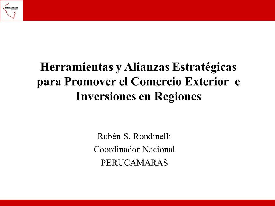 Rubén S. Rondinelli Coordinador Nacional PERUCAMARAS