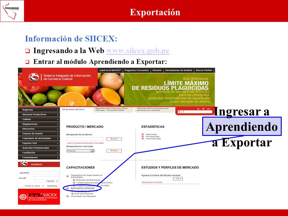 Ingresar a Aprendiendo a Exportar
