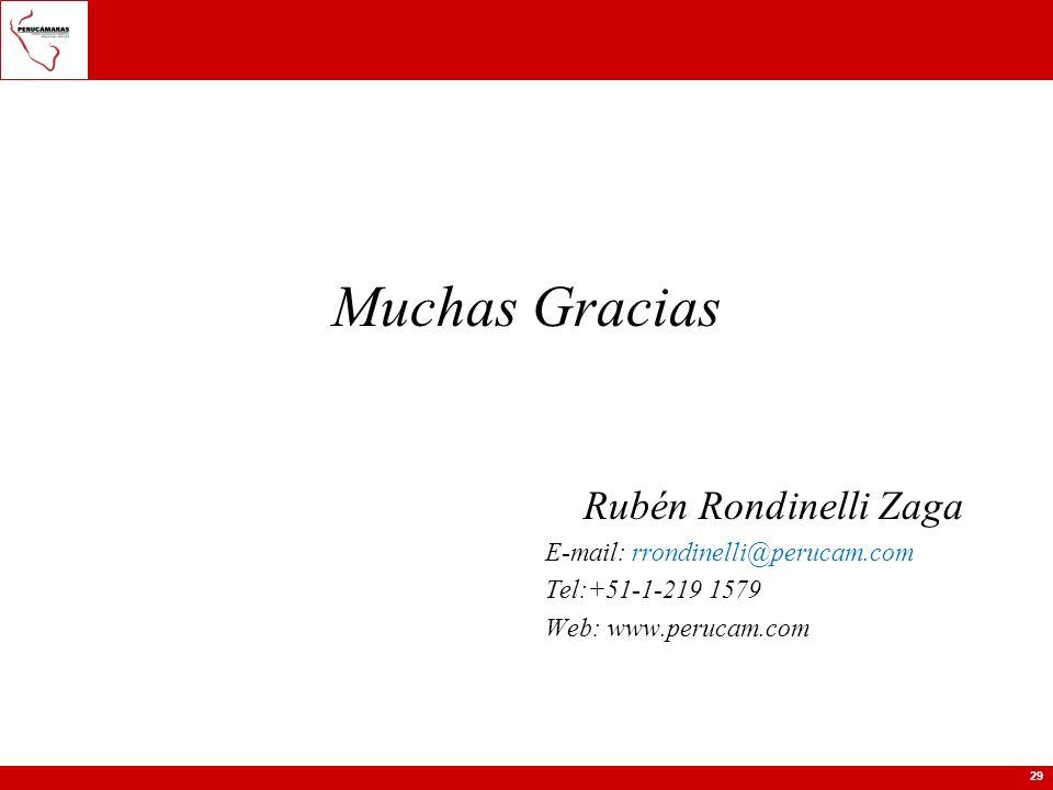 Muchas Gracias Rubén Rondinelli Zaga E-mail: rrondinelli@perucam.com
