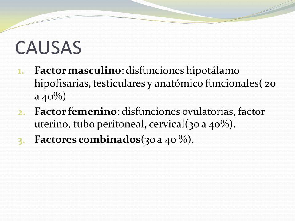 CAUSAS Factor masculino: disfunciones hipotálamo hipofisarias, testiculares y anatómico funcionales( 20 a 40%)