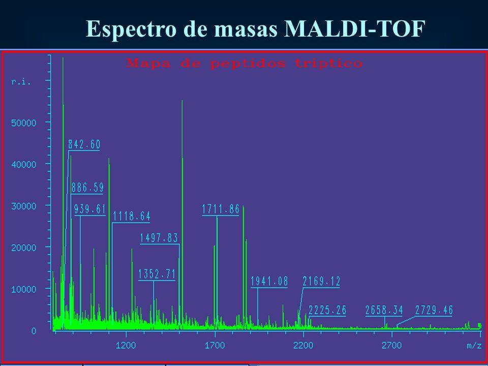 Espectro de masas MALDI-TOF