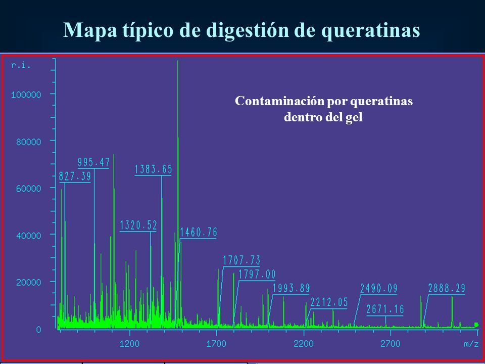 Mapa típico de digestión de queratinas Contaminación por queratinas