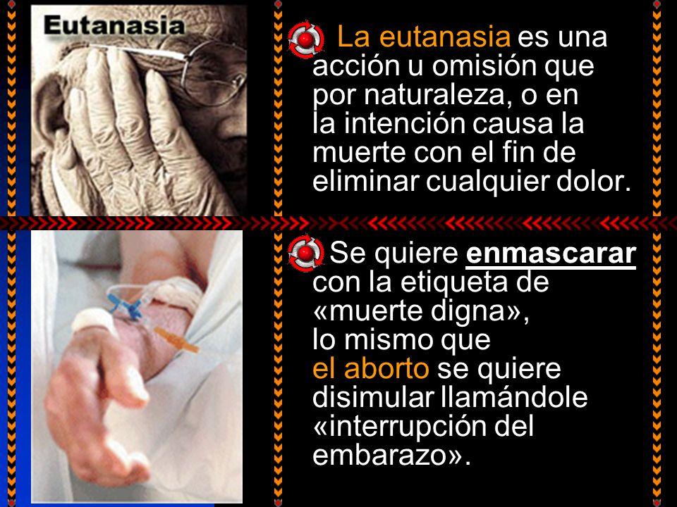 La eutanasia es una acción u omisión que por naturaleza, o en la intención causa la muerte con el fin de eliminar cualquier dolor.