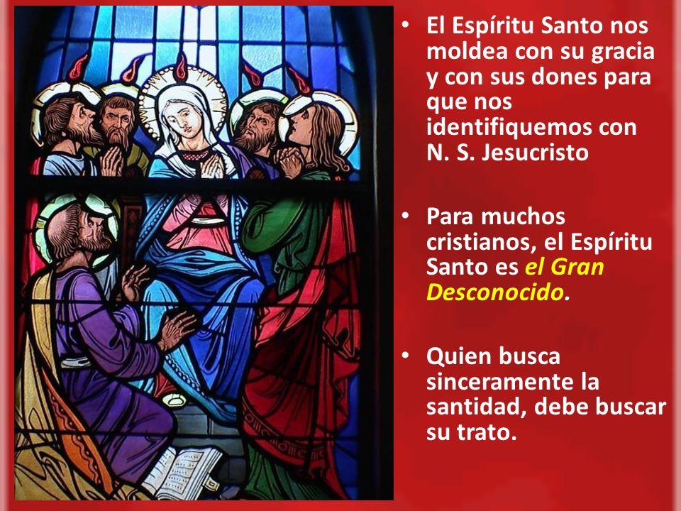 El Espíritu Santo nos moldea con su gracia y con sus dones para que nos identifiquemos con N. S. Jesucristo