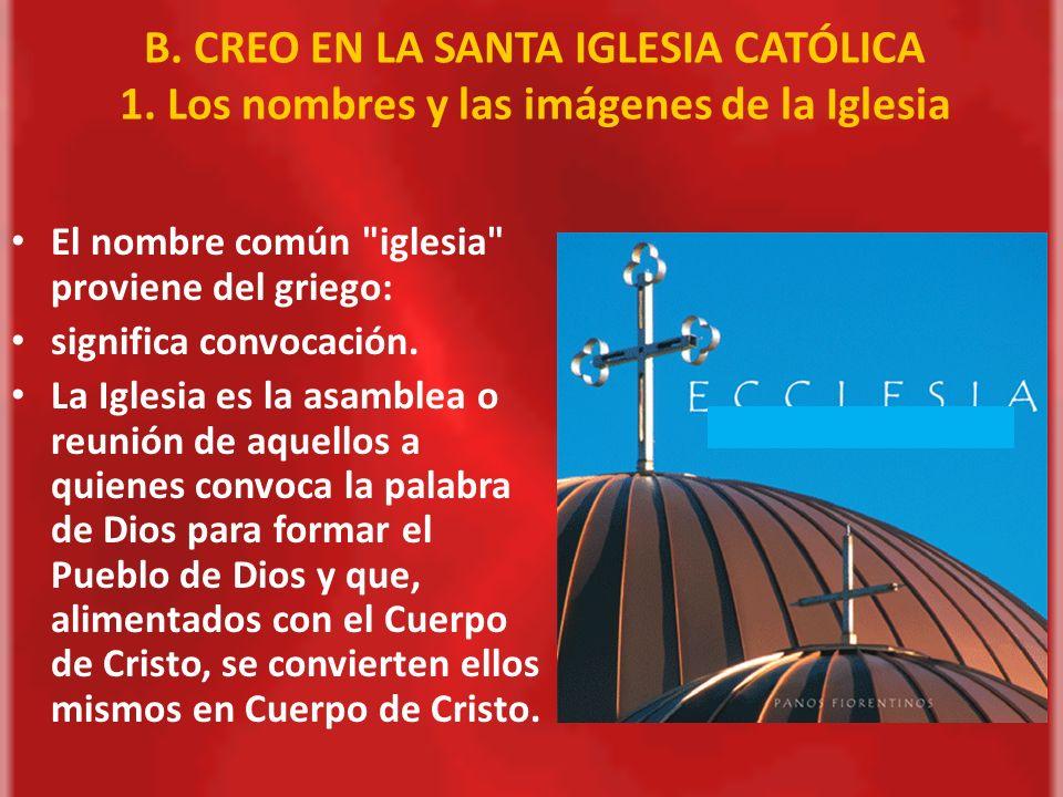 B. CREO EN LA SANTA IGLESIA CATÓLICA 1