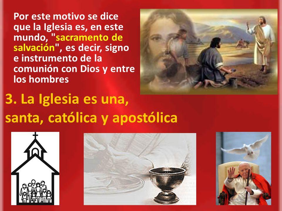 3. La Iglesia es una, santa, católica y apostólica