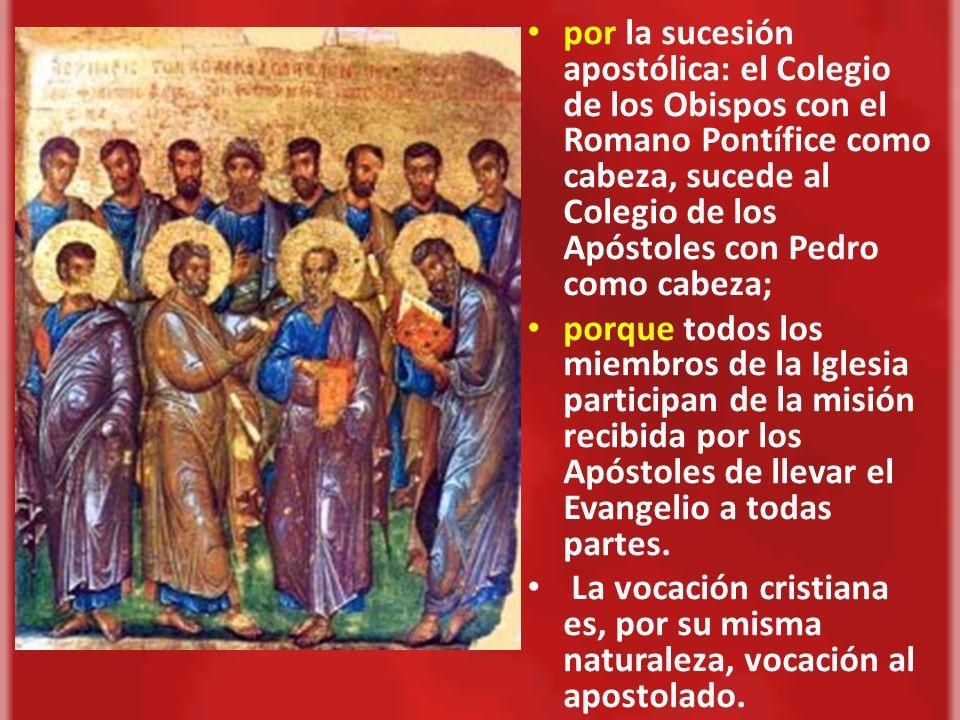 por la sucesión apostólica: el Colegio de los Obispos con el Romano Pontífice como cabeza, sucede al Colegio de los Apóstoles con Pedro como cabeza;