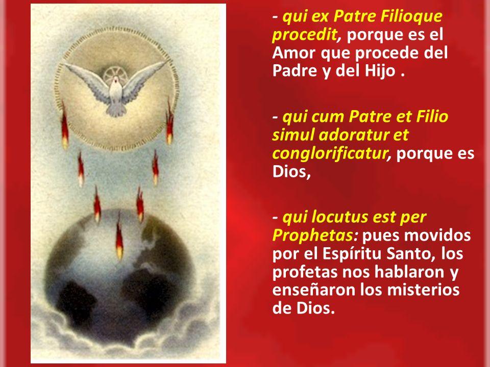 - qui ex Patre Filioque procedit, porque es el Amor que procede del Padre y del Hijo .